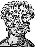 Anthropometamorphosis : man transform'd or, The artificial changling
